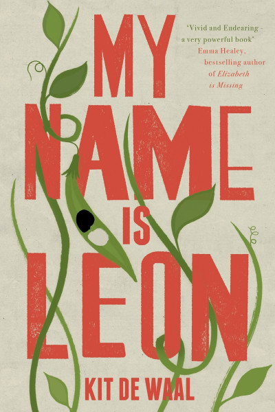 Book cover of My Name Is Leon by Kit de Waal